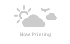 ネットショップハードユーザー主婦T美のマイル取得シミュレーション
