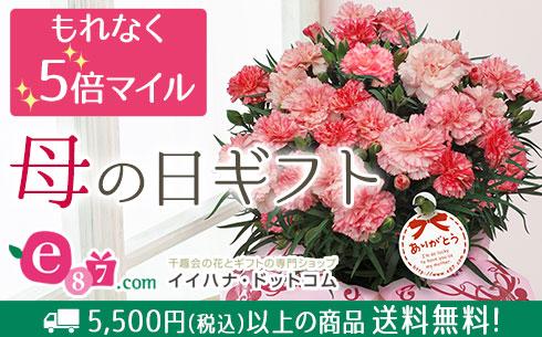 【イイハナ・ドットコム】母の日フラワーギフト特集